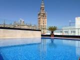 hotel_casa_1800_sevilla_piscina_en_la_terraza_del_hotel_casa_1800_de_sevilla.jpg